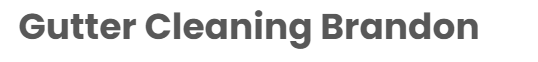 gutter-cleaning-brandon-logo.png